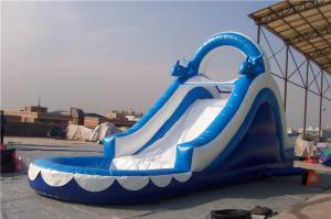 China Huge Dolphin Inflatable Water Slide Combo , Backyard Water Slides For Adults on sale