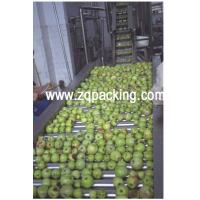 China apple juice concentrate production line on sale