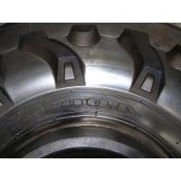 Moule de pneu de machines agricoles, moule en acier fait sur commande de pneu de tracteur