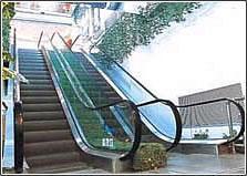 China Escalator (W8) / Moving Stairs / Moving Walk / Auto Walk on sale