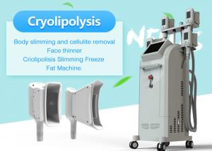 China Touch Screen Vertical 4 Handles Fat Freeze Cryolipolysis Slimming Machine on sale