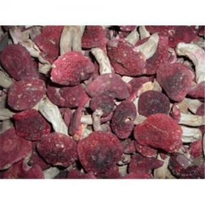 China Rare Wild Mushroom / authentic wild red mushrooms on sale