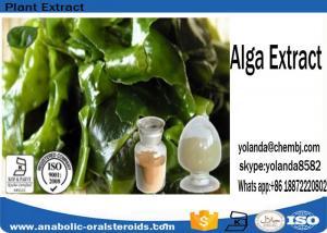 China Weight Loss Brown Alga Extract Fucoxanthin 5%~20%, Fucoidan 85% on sale