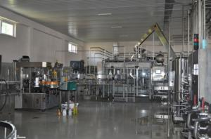 China Turn Key Projects Fruit Juice Production Line Small Scale Fruit Juice Processing Equipment on sale