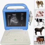Escáner del LCD Digital LaptopUltrasound del veterinario de US-500V
