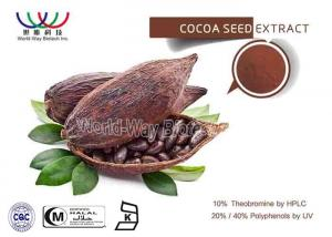 China Food Ingredients Pure Plant Extract Theobroma Cacao Powder With Theobromine APolyphenols For Fat Loss on sale