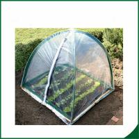 China PVC coated Garden tunnel greenhouse Home Garden Mini Greenhouse Warm Houses For Growing Trees on sale