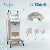 China Freezing fat adelgasar criolipolisis fat freezing machine easy slim device for loss Weight on sale
