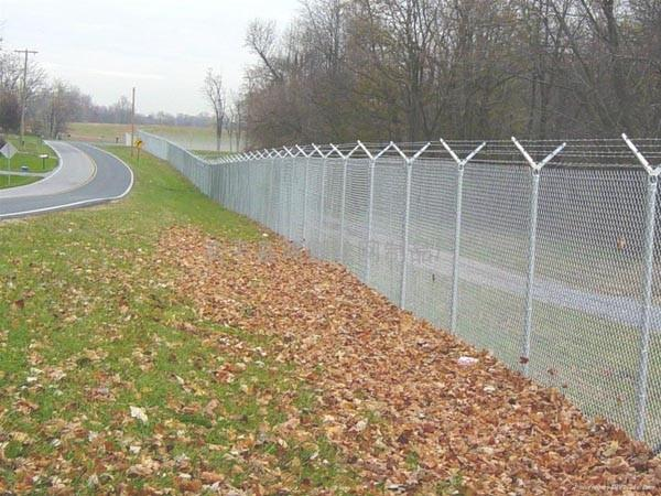 Galvanised chain link fence metal wire mesh roll for