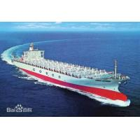 Sea Freight Shipping Services For International Export / Import