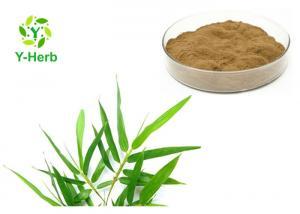 China Lophatherum Herb P.E. 5%-30% 10:1 Organic Bamboo Leaf Extract Flavonoids Powder on sale