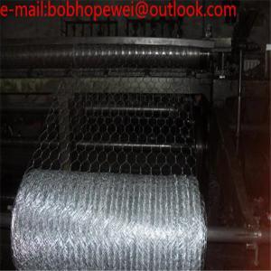 China 1.2mm Aviary, Chicken, Rabbit Bird Wire HEX Netting Mesh/Stainless Steel Hex Mesh Hexagonal Wire Mesh from 100% factory on sale