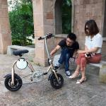 Aluminum Material Folding Electric Mountain Bike LED Display Lithium Battery