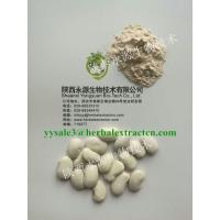 White Kidney Bean Extract,  3000 Unit/g, 1%Phaseolamin, manufacturer, weight lose ingredient , Shaanxi Yongyuan Bio-Tech