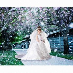China Hot sale porcelain bride wedding dolls on sale
