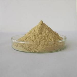China Weight Loss Products Antirheumatic Ginger Powder Dried on sale