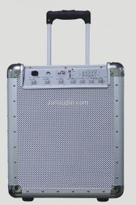 China Stage Audio Equipment , 2-way Protable Guitar Speaker With SD Card on sale