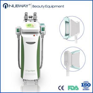 China 5 handls cryolipolysis machine/5 handle cryolipolysis/3d cryolipolysis on sale