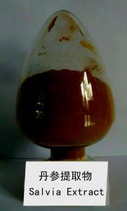 China extrato erval natural do fornecedor da porcelana do extrato do salvia --Salvia Miltiorrhizae on sale