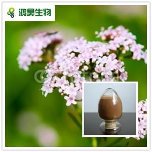 China Herb extract Valerian Root Extract 0.8% valeric acid HPLC 4:1 8:1 on sale