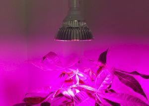 Agricultural 54w Led Grow Light Bulbs For Indoor Greenhouse