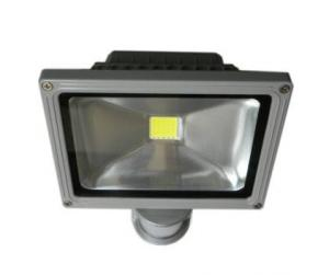China Brightest high power COB10w dimmable PIR LED Flood Light outside for Public landmark on sale