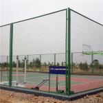 Galvanized/PVC Coated Chain Link Fence