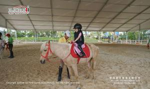 China Asia Horse Racing Tent, Competition Horse Tent For Festival Celebration on sale