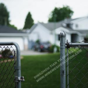 China Knuckled End Chain Link Fencing 50 X 50 House Gate Steel Post Residential Grade on sale