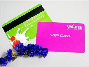 China Customized PVC Membership card magnetic stripe card with factory price on sale