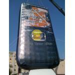 globos formados aduana inflable de los 8*4*0.8m con el PVC de 0.18m m para la publicidad al aire libre