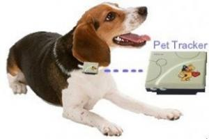Quality TK201 Mini GPS Tracker for Vehicle/Pets/child for sale