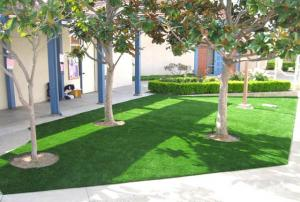China Artificial grass for Christmas on sale