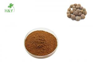 China 100% Pure herbal hot selling high quality terminalia chebula extract powder on sale