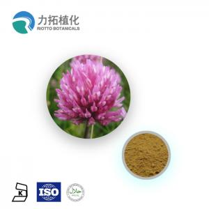 China Red Clover Extract Plant Extract Powder Total Isoflavone 2.5% 8% 20% 40% on sale