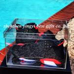 China clear plexiglass shoe box wholesale