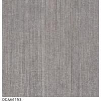 Carpet Cleaning Equipment / Do Tile (OCA66153)