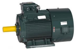 China YE3 AC Induction motor , Three Phase Motor with Fully-enclosed and Fan Cooled Squirrel Cage on sale