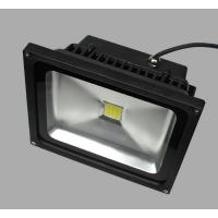 30W Color Changing Outdoor LED Flood Light black housing black LED Flood light 30W