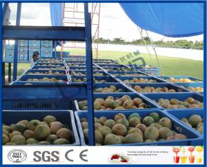 China Fresh Pineapple / Mango Juice Processing Plant With Can Packaging Machine on sale