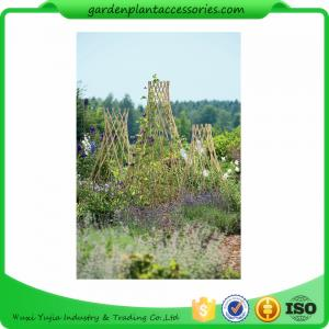 China Straight Garden Bamboo Stakes For Thick Bamboo Fencing 40 X 150cm on sale