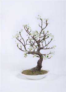 China High Density Indoor Bonsai Tree , Anti UV Silk Tree Bonsai Public Area High Imitation on sale