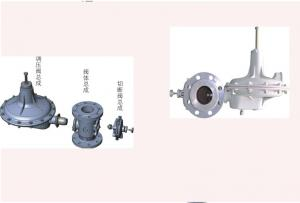 China Spring Load Gas Regulators For Natural Gas , Durable Gas Appliance Regulator on sale