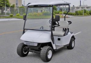 China 2019 Cheap Custom Portable 2 Seats Electric Golf Cart on sale