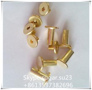 China Rivet brass tubular rivets stainless steel rivet rivet screw sex screw on sale