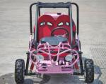 Foot Brake Operation Go Kart Buggy 4 Stroke CTV Electric Start Automatic With Reverse