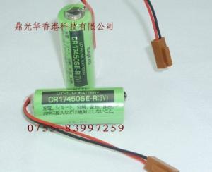 10PCS Sanyo batterie 3 V 2200 mAh CR17450SE-R avec Plug