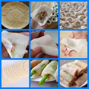 Quality Good appearance dumplingsheet making machine,auto Samosa sheet makingmachine for sale