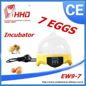 China Wholesale educational toys for kids/Quail Egg Incubator/educational toys for teens on sale