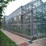 Vegetable Fruits 0.4KN/M2 9.6m Multi Span Greenhouse